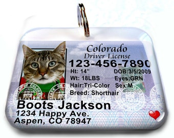Colorado driver license Personalized Custom ID Tags for dogs and cats Double Sided pet tags