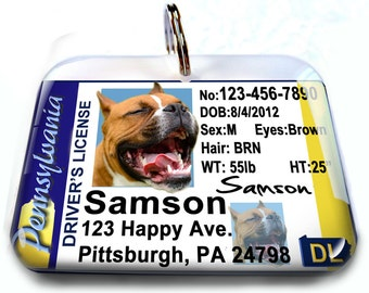 Pennsylvania driver license Personalized Custom ID Tags for dogs and cats Double Sided pet tags