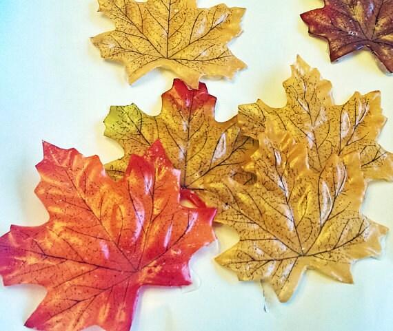 Soap Petals - Energizing Oak 12 count