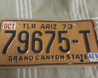 Vintage TLR 1973 Arizona License Plate.79675-T. Cactus. Grand Canyon State. Rat Rod. Bar Decor. Garage Decor. Man Cave