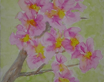 Original watercolor painting, Pink Flowers, Still Life