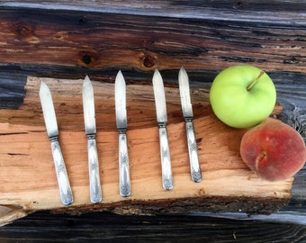 Vintage Set of 5 Wm and Rogers Silver Plate Fruit Knives, kitchenware,silver plate knives, grapefruit knives, vintage kitchen