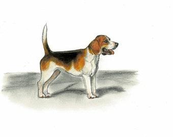 Beagle Dog Vintage Style Print