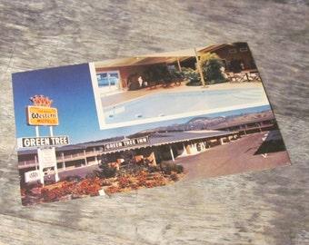 Vintage 1950's Postcard, Green Tree Inn, California