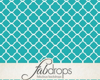 5x5 Fancy Teal Poodle Quatrefoil Photography backdrop - Fab Vinyl 5x5 ft (FV2094)