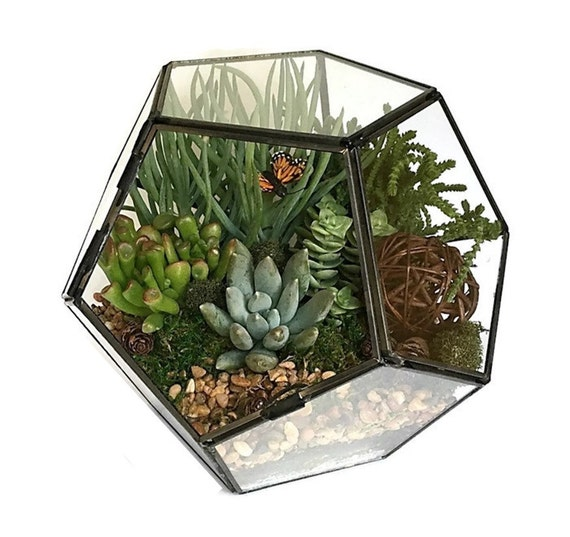 geometric succulent terrarium kit succulent diy. Black Bedroom Furniture Sets. Home Design Ideas