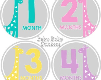 Baby Month Stickers, Monthly Baby Stickers, Bodysuit Stickers, Monthly Milestone Stickers, Baby Monthly Stickers, Giraffe Girls