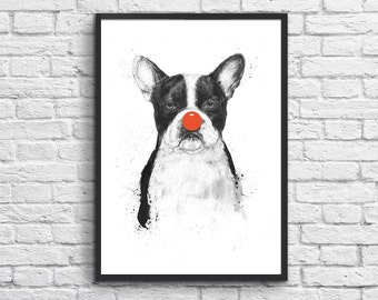 Art-Poster 50 x 70 cm - Clown Dog