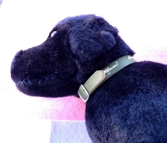 Bauer Dog Collar