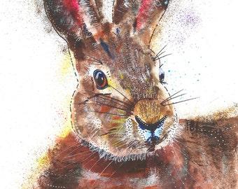 Sam Fellman Art painting Magnet Rabbit (A6)