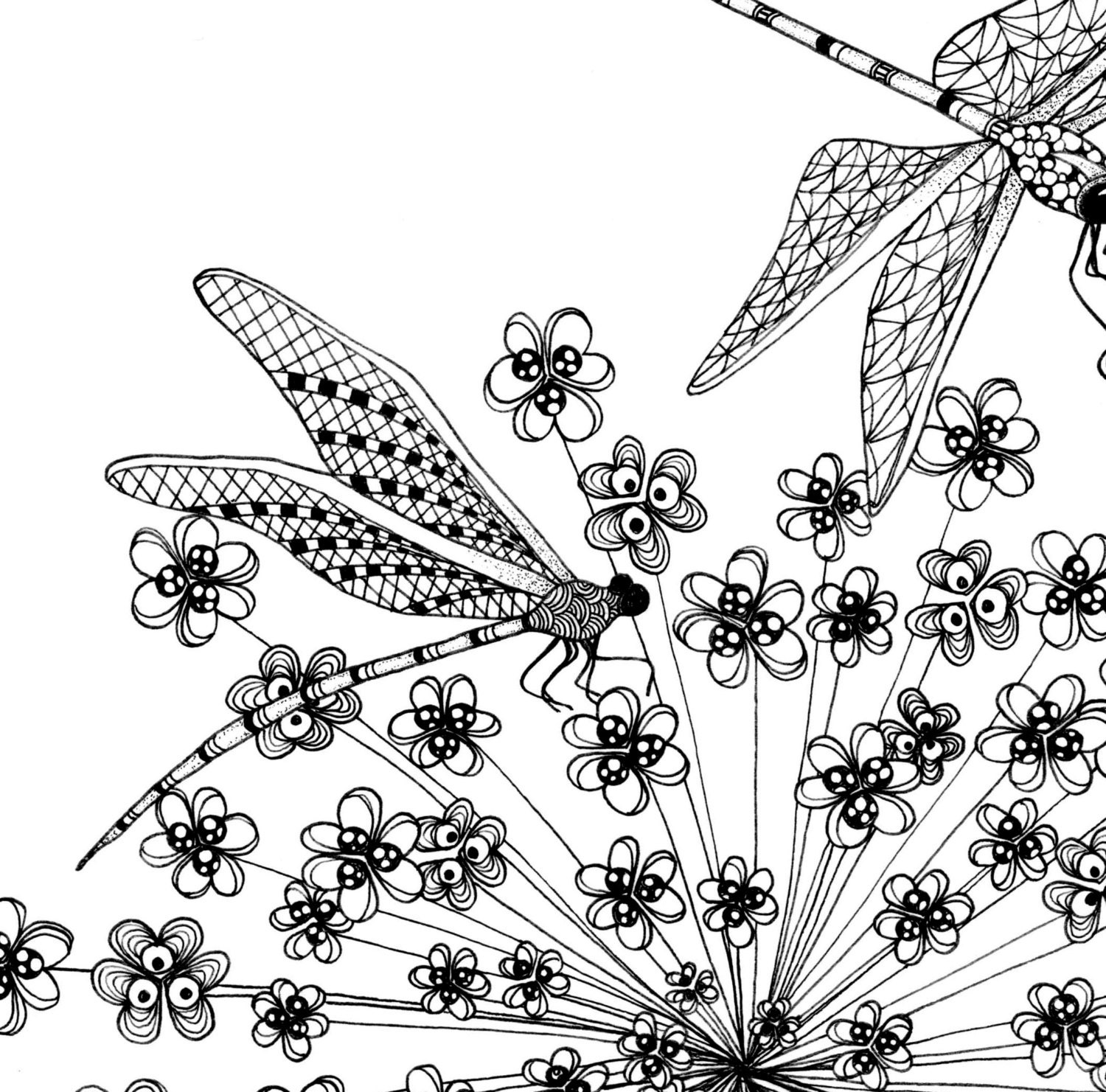 flowers and dragonflies coloring pages | Printable coloring pages of a flower illustration & dragonfly