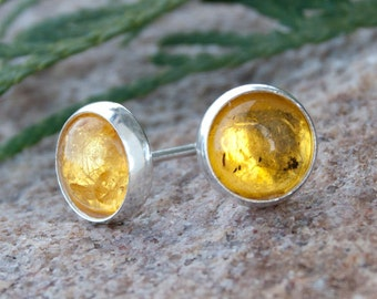 Gold amber - tiny earrings A399