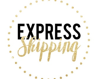 Upgraded PRIORITY USA Shipping Fee (Only purchase if you have already purchased an item with standard shipping!!)