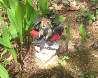 Taxidermy chipmunk in doll head.