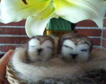 Felted Owl Pair