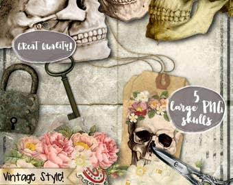 SKULLS large PNG printables - Halloween gothic Digital collage sheet roses vintage diy scrap day of the dead bones instant downloads - cl124
