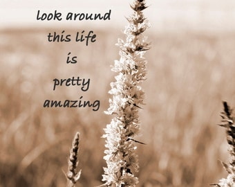 Sepia - Inspirational Quote- Instant Download - Because when you Stop and Look Around This Life is Pretty Amazing - Photography Quote