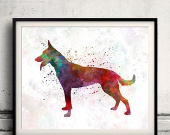 Dutch Shepherd Dog 01 in watercolor - Fine Art Print Glicee Poster Decor Home Watercolor Illustration - SKU 1361