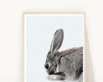 Rabbit Print, Woodland Nursery Decor, Bunny Print,  Printable Art, Cute Animals,  Wall art, Wall Decor, Instant download