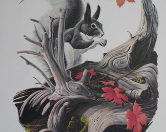 """Vintage Squirrel Print, Larry Toschik Fine Art Print, Fall Leaves-Delight of the Forest, 11x14"""" Ready to Frame, 1970, 1 of 4 for Sale"""