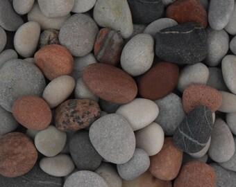 Bulk Sea Stones  - Beach Pebbles - Stone Set  50 stone