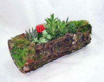 Rustic Tree Bark Succulent Planter Centerpiece