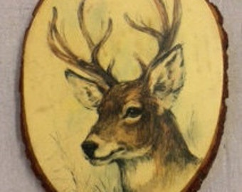 Vintage Deer Drawing