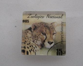 Cheetah Glass Tile Magnet