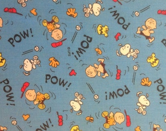 Charlie Brown/Snoopy baseball with blue back ground year 2000