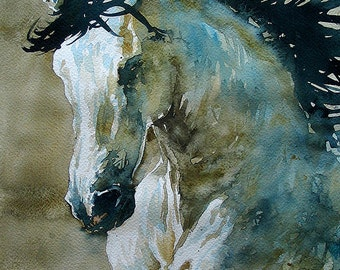 Wild Horse, Wild Stallion, Mustang, Running Horse, Running Stallion, Running Mustang