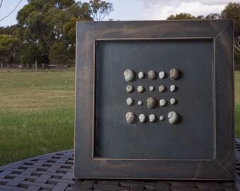 Snail shells frame