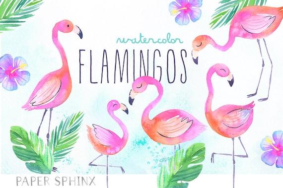 Watercolor Flamingos Clipart Tropical Flamingos Summer