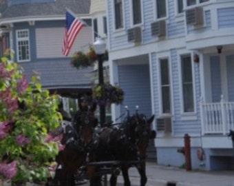 Horses/Lilacs on Mackinac Canvas -- SAVE 10 & free shipping!!!