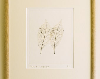 Original etching: 'Same but different', hand-printed from a solar plate.