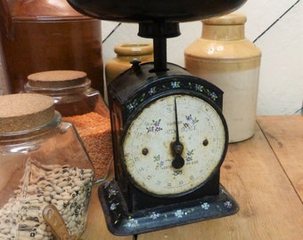 Hand Painted Flowery Scales/Vintage Salter Scales/Salter Scales under the Hughes Family Scale name
