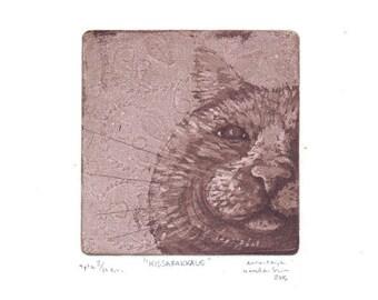 Kissarakkaus ( Cat Love )