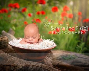 Digital Newborn Photography Background - Poppy Bowl