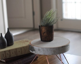 Hairpin Leg Plant Stand - Display Stool - Jewelry Pedestal