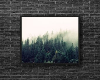 Misty Forest Photo - Foggy Forest Photo - Fog - Forest Landscape Photo - Forest Print - Evergreen - Forest Wall Art - Forest Wall Decor