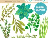 HERBS Digital Collage Clipart Instant Download Illustration Parsley Sage Basil Rosemary Chives Thyme Dill Cooking Kitchen Art Wall Decor