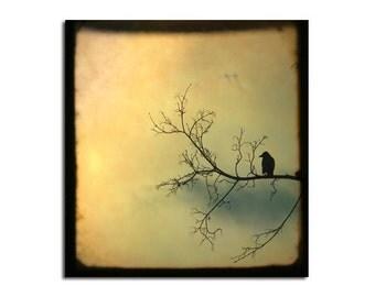 Crow Photograph Surreal Light, Golden Metallic Paper, Bird Print, Animal Nursery Print, Nature Art, Zen Bird Image, Pastels - Solitude Mood