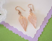Evergreen Leaf Earrings Rose Gold, Evergreen Leaf, Small Size Earrings, 24kt Rose Gold Earrings, LESM110