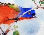 Bird Art / Watercolor PRINT / Wildlife nature art / Garden painting watercolors / Bird illustration / Painting bird / Bird wall decor