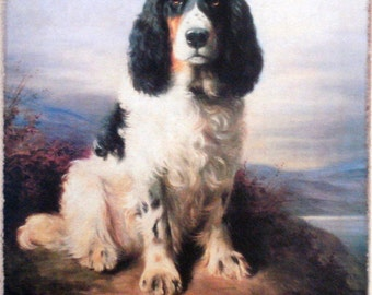 Cheviot's Springer Spaniel Dog Redux on Canvas Painting Print Ready to Hang