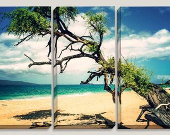 Blue Sky, Turquise Ocean, Yellow Sand Beach, Big Beach, Maui, Hawaii, Tree on the Beach, Royal Blue, Canvas Art, Coastline, Triptych