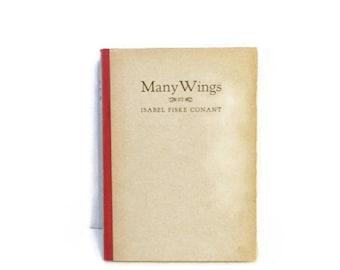 Many Wings - Isabel Fisk Conant - Dugald Stewart Walker illustration - 1923