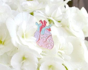 Anatomical Heart Enamel Pin - Anatomical Pastel Heart Illustration - Lapel Pin Pastel Heart Illustration - Pretty Anatomy Drawing Enamel Pin