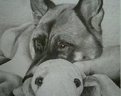 Custom Drawing From Picture -  8x10 Custom Pet Pencil Sketch Art  Drawing From Photo