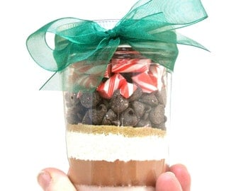 Hot Chocolate in Mason Jar- Layered Cocoa with Candy Canes, Winter Wedding Favors, Housewarming, Corporate Gift, Secret Santa Gift