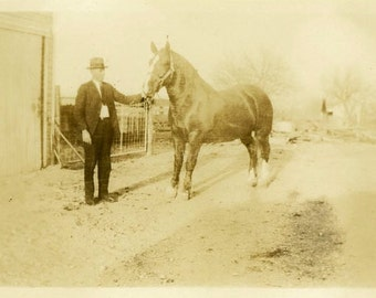 "Vintage Photo ""Michigan Horse"" Snapshot Photo Old Antique Photo Black & White Photograph Found Photo Paper Ephemera Vernacular - 187"